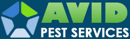 Avid Pest Services