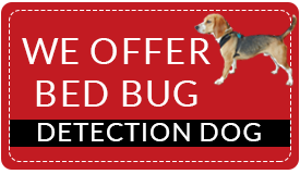 k9 bed bug detection